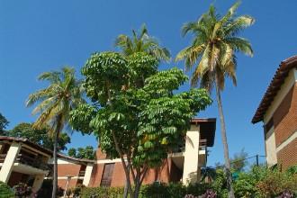 Image du hotel versalles garden offert par VosVacances.ca